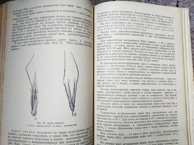 Определение качества зерна, муки и крупы, фото №5