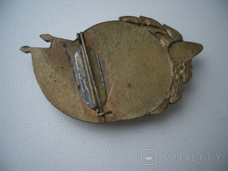 СССР,Спартакиадв ВВС,чемпион, фото №5