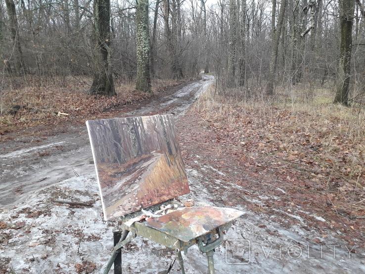 Дубовый лес. Этюд с натуры. х.м, фото №3