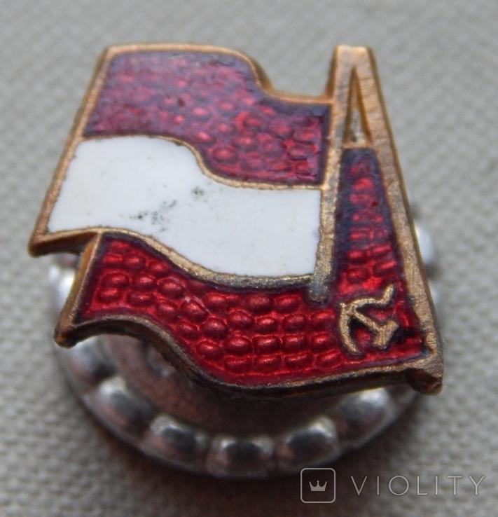 Радянсько-Польська дружба. Гвинт., фото №4