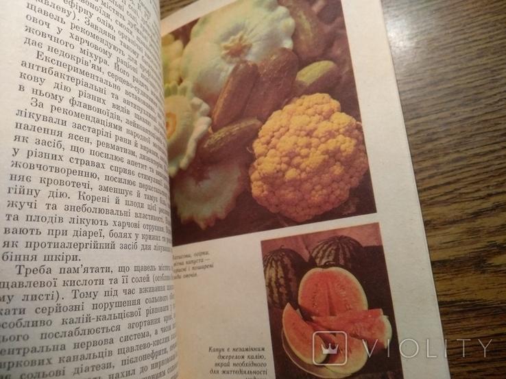 Овочі і фрукти в нашому харчуванні 1988, фото №4