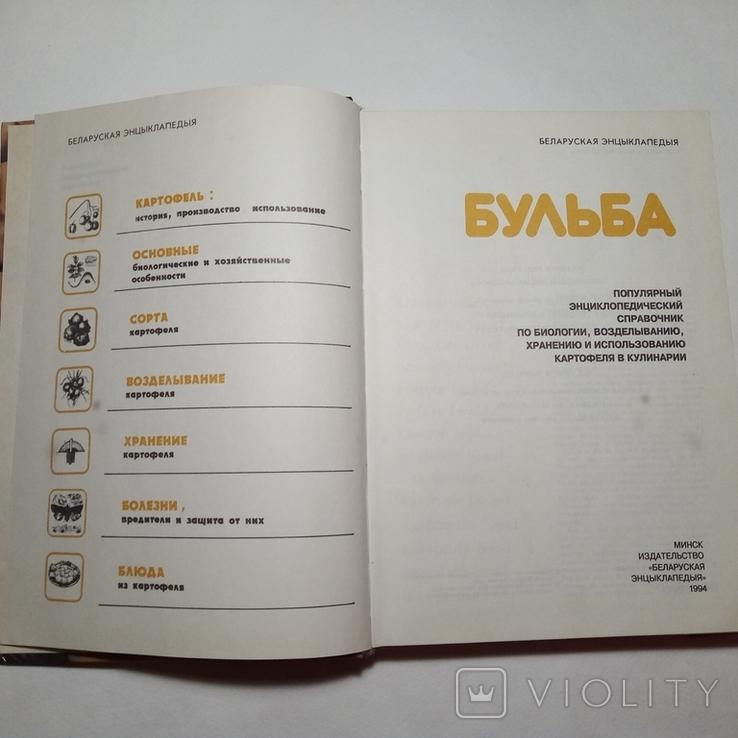 1994 Бульба БЕЛАРУСКАЯ ЭНЦЫКЛАПЕДЫЯ (картофель, кулинария), фото №5