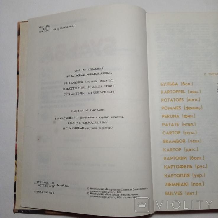 1994 Бульба БЕЛАРУСКАЯ ЭНЦЫКЛАПЕДЫЯ (картофель, кулинария), фото №6