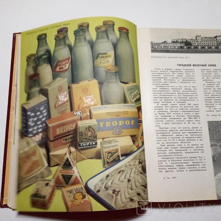 1962 Молочная пища Пищепромиздат, фото №6