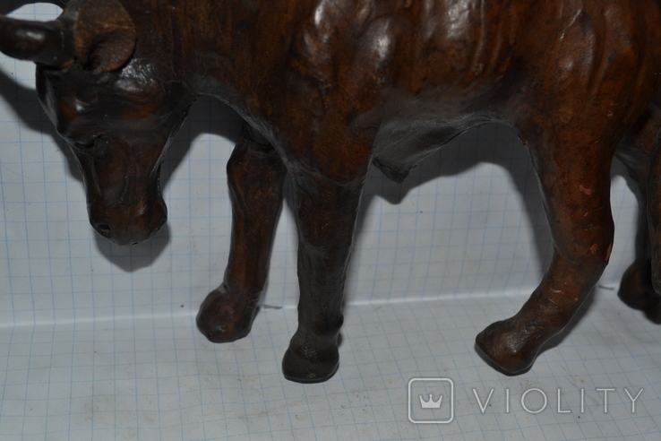Антилопа гну., фото №4