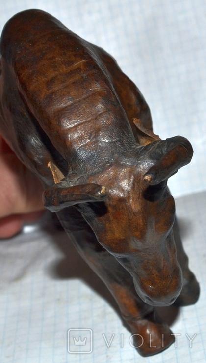 Антилопа гну., фото №7