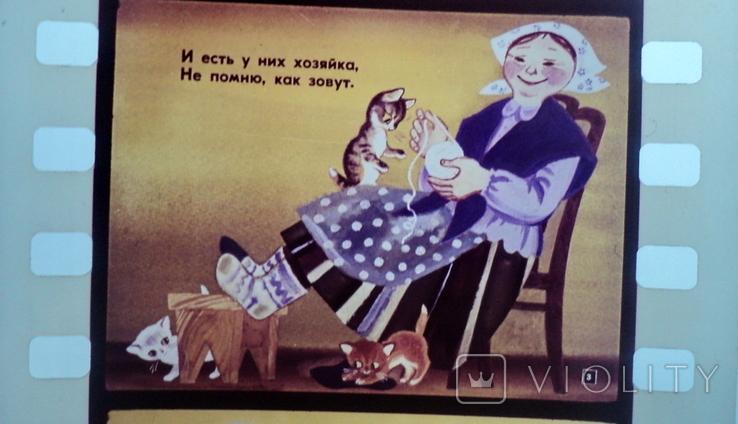 Касьянка,Том и Плут  диафильм, фото №4