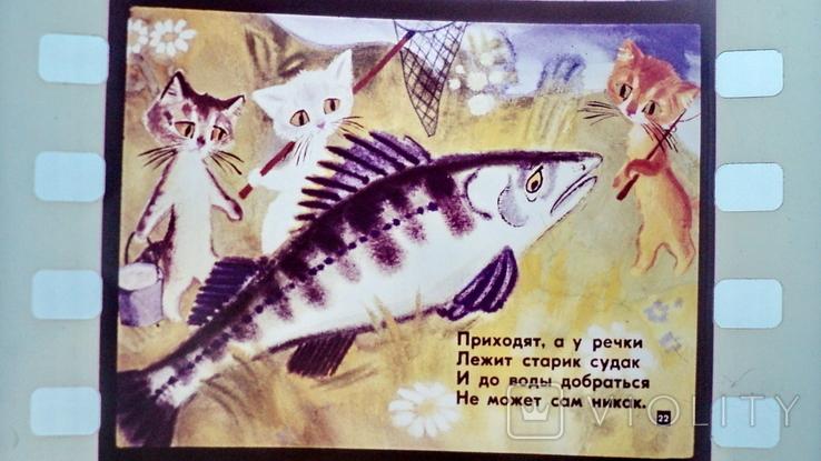 Касьянка,Том и Плут  диафильм, фото №8