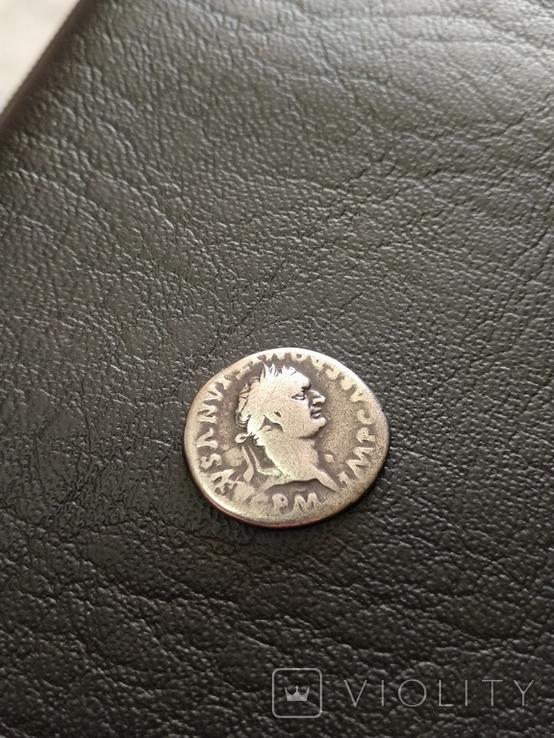 Домициан., фото №3