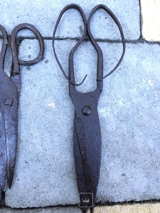 Старовинні уовані ножиці, фото №3