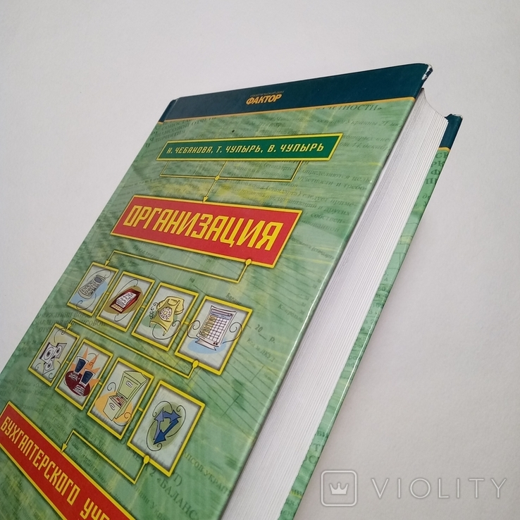 2008 Организация бухгалтерского учета, Чебанова Н., Бухгалтерский учет, Аудит, фото №2