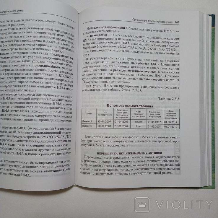 2008 Организация бухгалтерского учета, Чебанова Н., Бухгалтерский учет, Аудит, фото №10