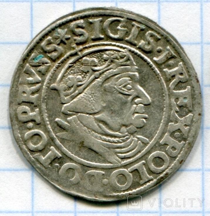 Сігізмунд 1 гріш 1538 рік Гданськ, Данціг, фото №3