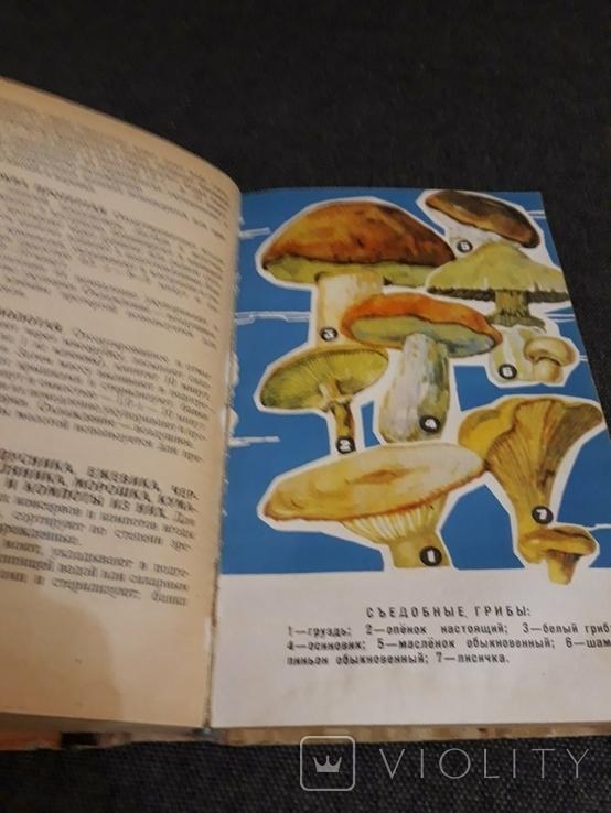 Домашнее консервирование 1968, фото №7