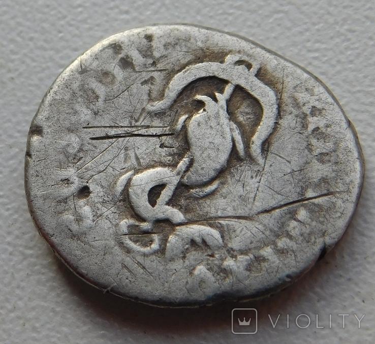 Денарий Тита, фото №5