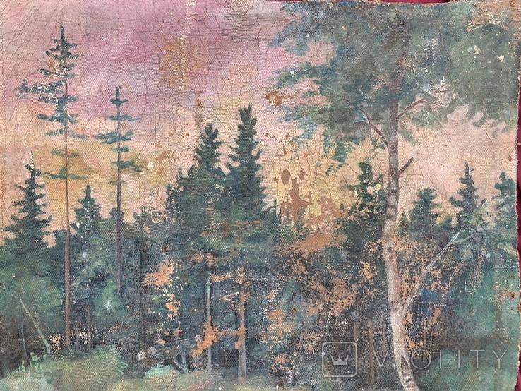 Пейзаж, фото №5