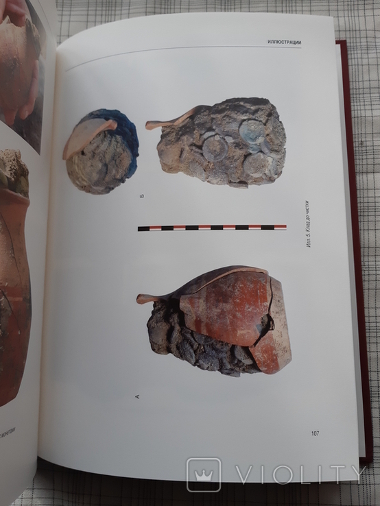 Клад позднеархаических монет из Фанагории. Фанагория. Том 8 (2), фото №7