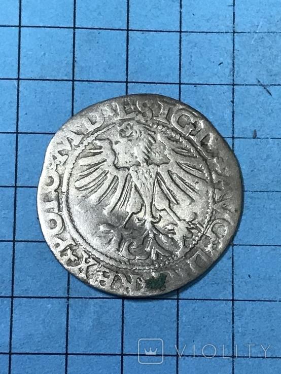Півгрош 1565, фото №5