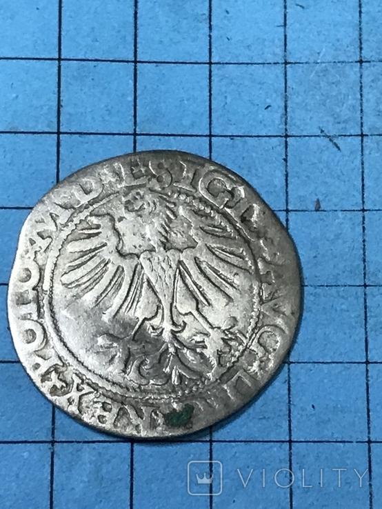 Півгрош 1565, фото №6