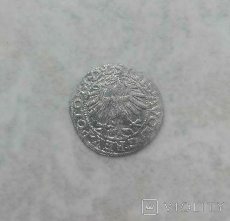 Півгрош 1565 р., фото №3