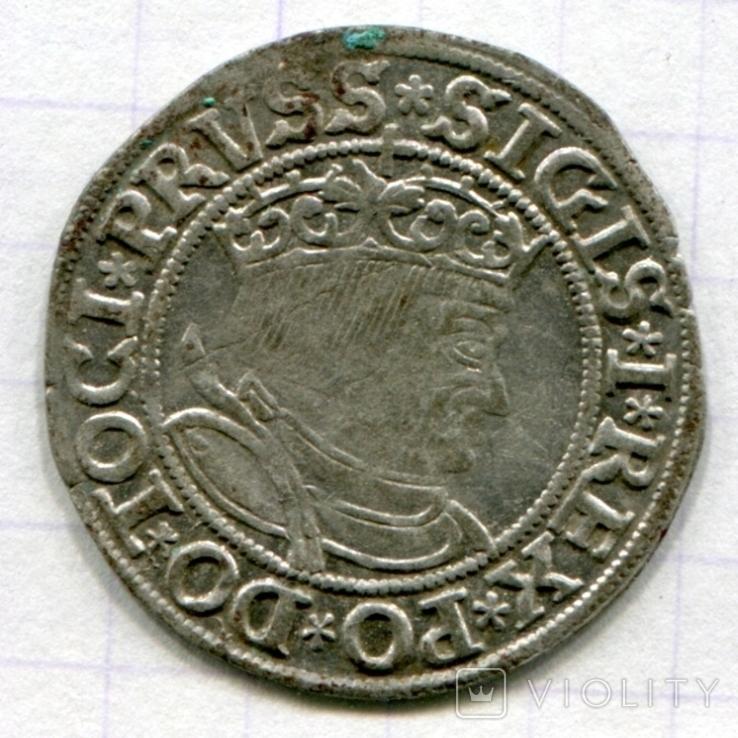 Сігізмунд 1 гріш 1533 рік м. Торунь для землі Пруської, фото №2