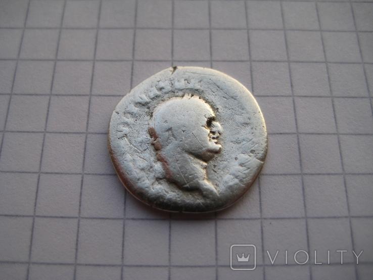 Денарий, Веспасиан (реверс - свинья), фото №4