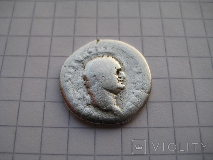 Денарий, Веспасиан (реверс - свинья), фото №5