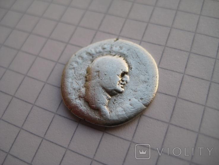 Денарий, Веспасиан (реверс - свинья), фото №7