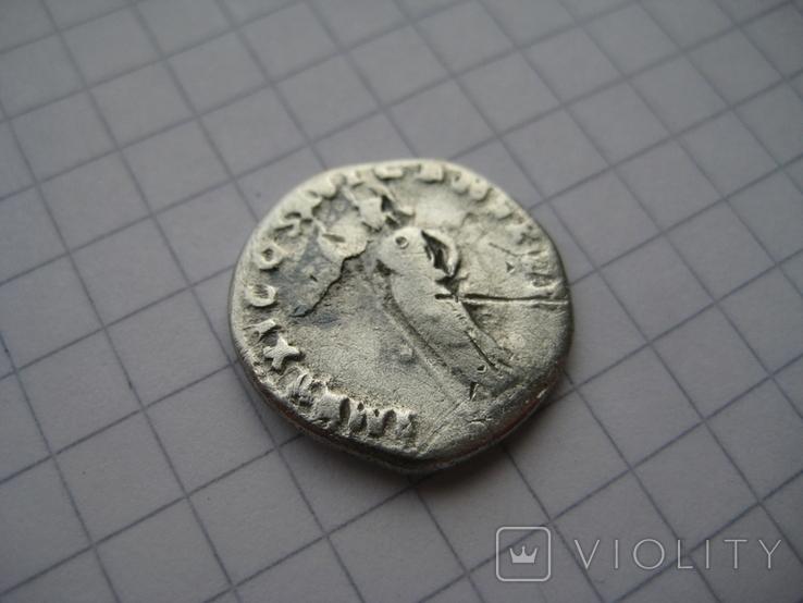 Денарий, Домициан, фото №11