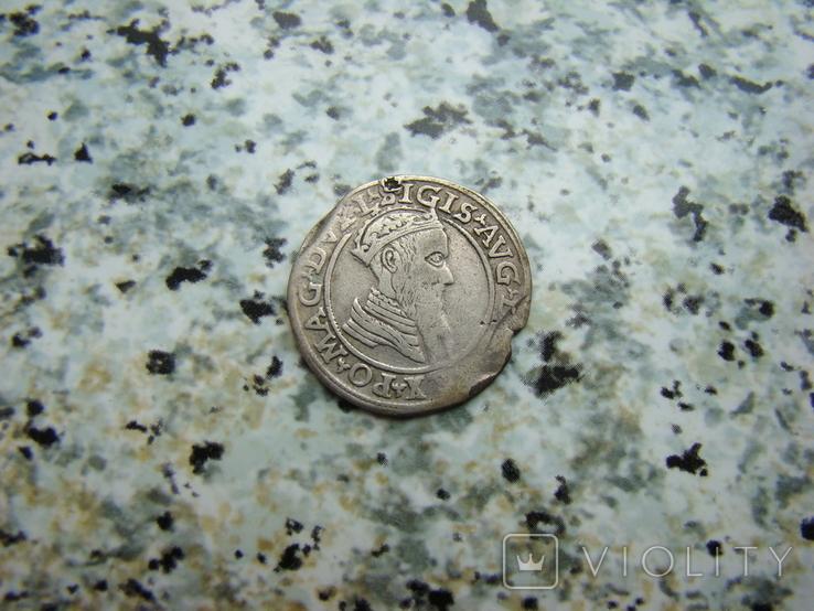 Чворак 4 гроша 1568 год, фото №2