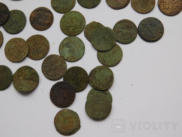 Шестак Казимира 1664 + бонус 39 боратинок, фото №5
