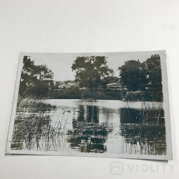 Река Донец возле Эсхара, фото №2