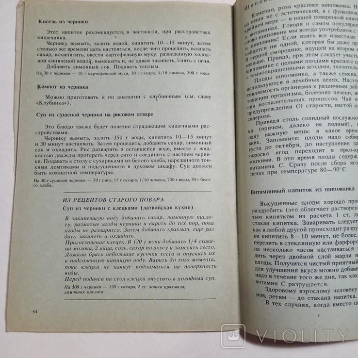 1990 Фруктово-ягодный круиз, Иоффе Г.А., фото №10