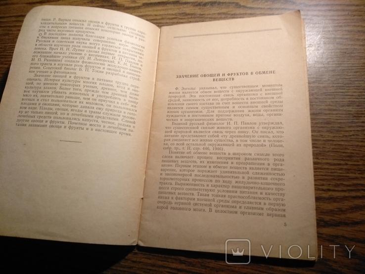 Овощи и фрукты в питании Ф.Комаров 1958, фото №6