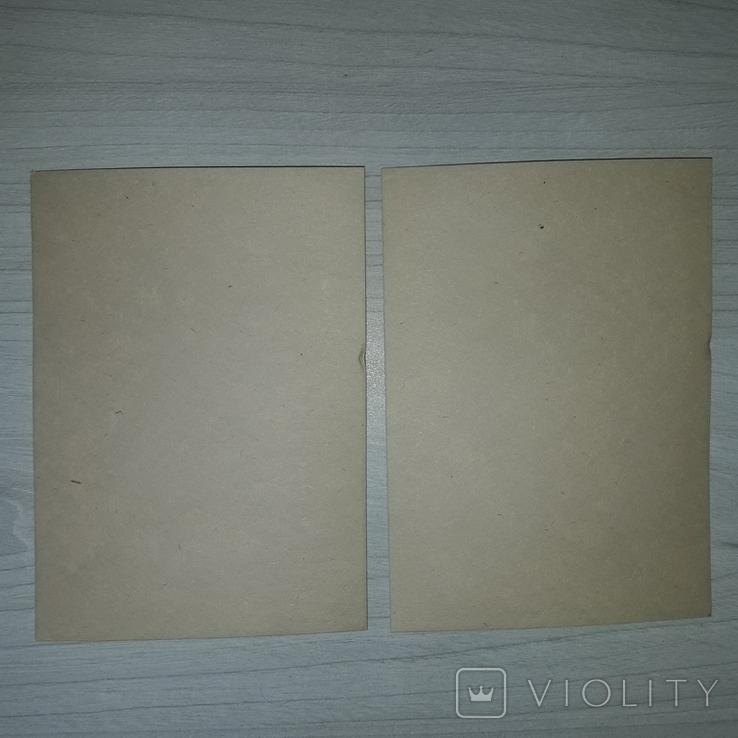 Книжные знаки В.А. Фролова 12 экслибрисов 1969, фото №7