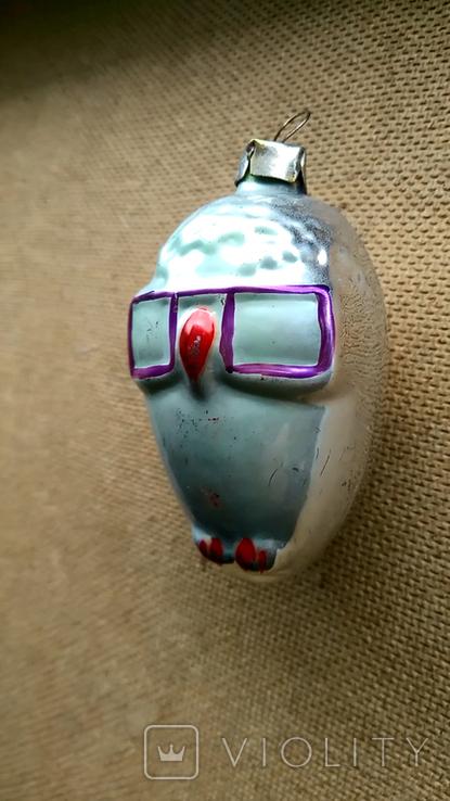 Сова в очках, фото №2