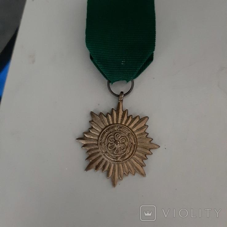 Копия награды