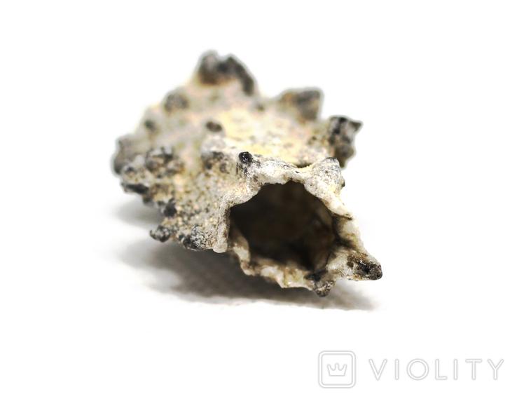 Фрагмент фульгурита, 2,5 грам, з сертифікатом автентичності, фото №7
