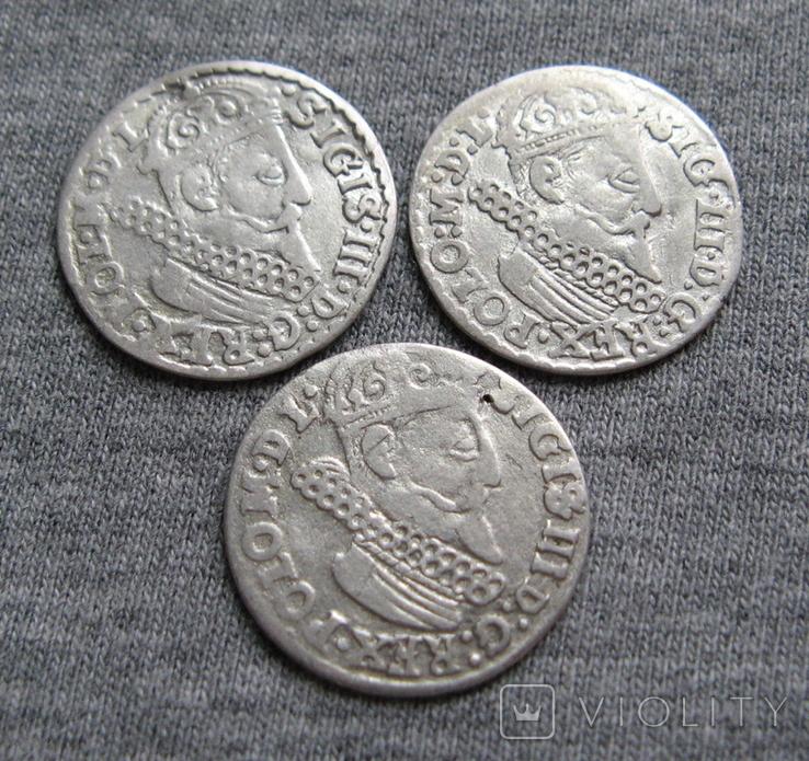 Трояки 1623 года. Сиг. ІІІ Ваза. Разновидности ( 3 штуки )., фото №3