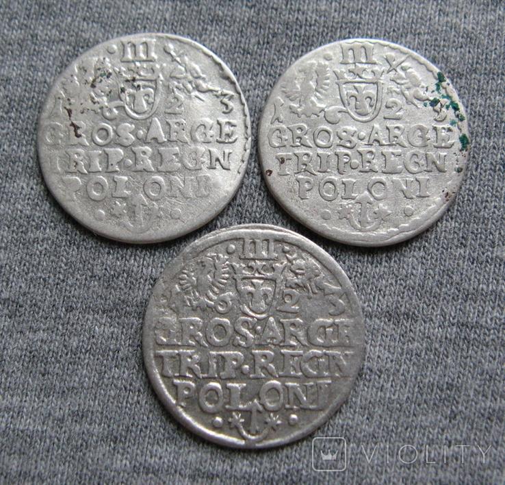 Трояки 1623 года. Сиг. ІІІ Ваза. Разновидности ( 3 штуки )., фото №7