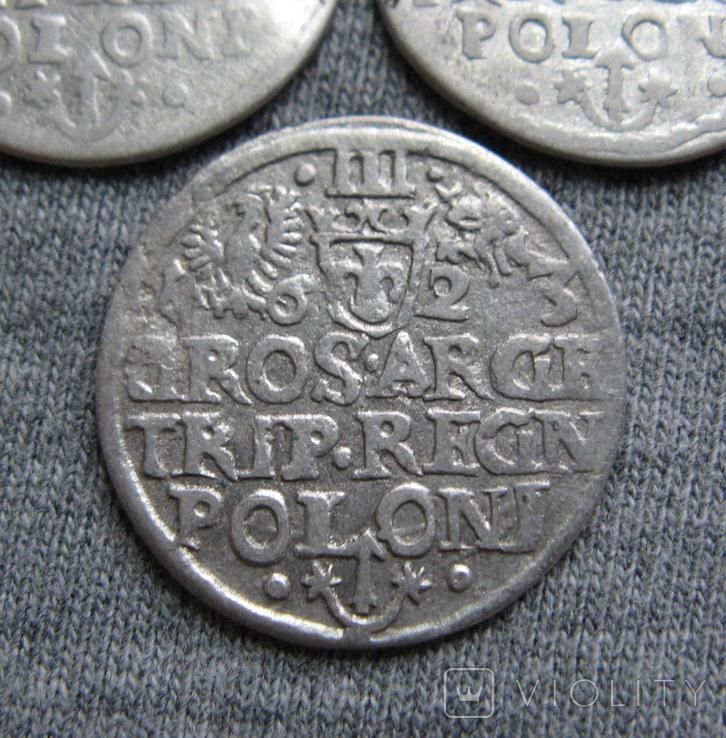 Трояки 1623 года. Сиг. ІІІ Ваза. Разновидности ( 3 штуки )., фото №9