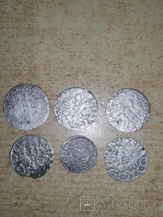 Монети Сігізмунда, фото №3