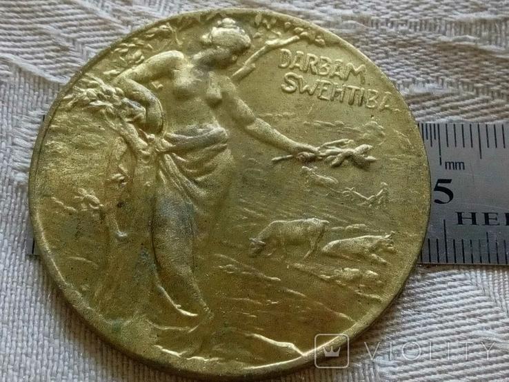 Медаль Сільськогосподарська 1900 -х років Прибалтика, Росія , бронза , копія, фото №2