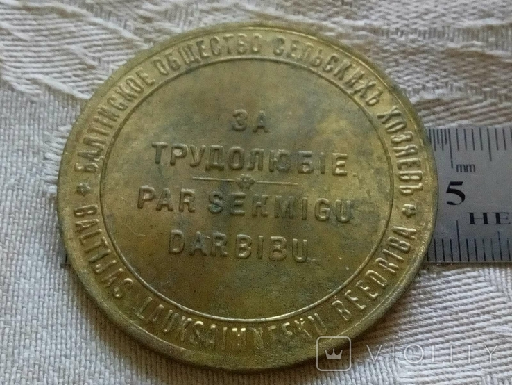 Медаль Сільськогосподарська 1900 -х років Прибалтика, Росія , бронза , копія, фото №3