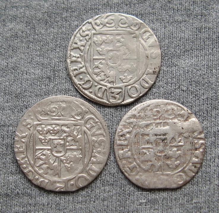 1/24 талера 1600-х годов. Густав Адольф. Эльбинг ( 3 штуки )., фото №11