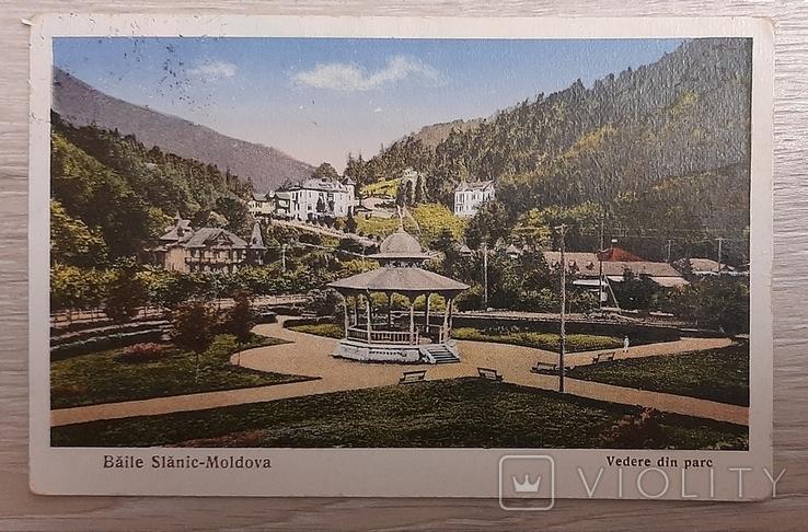 Слэник Молдова, Румыния, фото №2