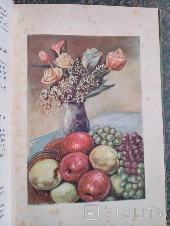 Кулинария и домашние заготовки, фото №6