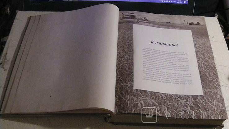 Книга о вкусной и здоровой пище. 1955 г., фото №6
