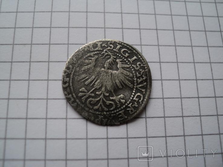 Полугрош 1563 год., фото №3