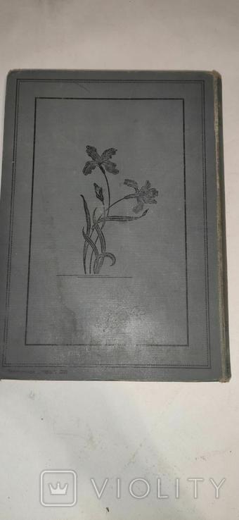 """Литературные и научно-популярные приложения """"Нивы"""" 1908 г  Том 2, фото №4"""